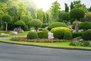 Landscape Can Drive Home Values landscaping albuquerque